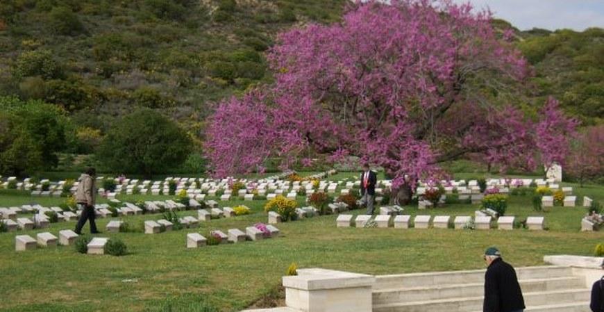Gallipoli Troy & Ephesus Tour